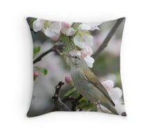 Worm Eating Tennessee Warbler. Throw Pillow