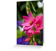 Flower 8 Greeting Card