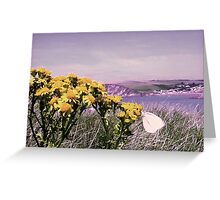 A Cabbage White Butterfly Greeting Card