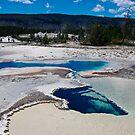 Geyser Basin, Yellowstone by Bob Moore