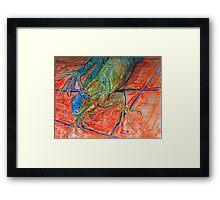 Red Eyed Iguana Framed Print