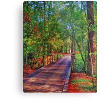 Houston Arboretum  Metal Print