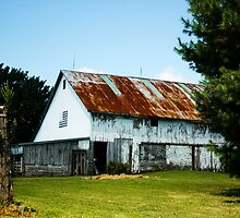 ANOTHER INDIANA BARN by Pauline Evans