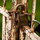 The Rusted Lock by Rae Tucker