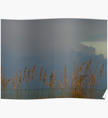 Sea Oats & storm-clouds {Sanibel Skyscape No.8} Poster