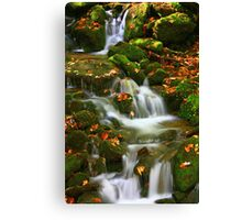LAUGHING WATERS Canvas Print