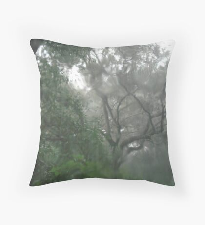 THROUGH TEARS OR RAIN, IT'S ALL THE SAME Throw Pillow