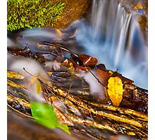 Jourama Falls Detail #2 Photographic Print