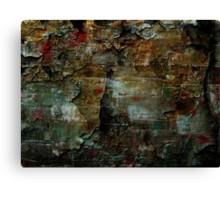 Beauty In The Cracks (1) Canvas Print