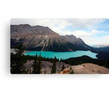peyto lake ,canada Canvas Print