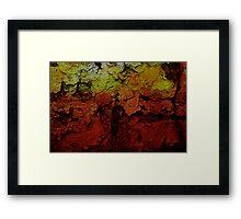 Beauty In The Cracks (2) Framed Print