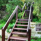 Stairs to a Lookout by Eve Parry