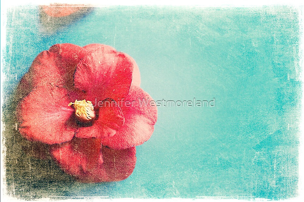 Aged Red Flower on turquoise background by Jennifer Westmoreland
