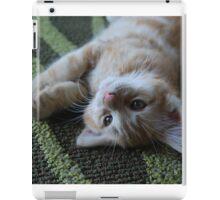 Ginger the Cat iPad Case/Skin