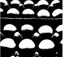 egg abstract Photographic Print