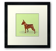 Hand drawn illustration of miniature pinscher. Framed Print