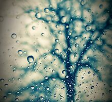 Tree Droplet by C-Willis