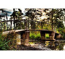 Swamp Bridge-2 Photographic Print