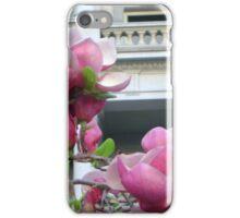 Pink Cherry blossoms, Washington DC iPhone Case/Skin