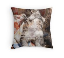 Laid back Bella Throw Pillow