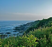 Beavertail at Dusk - Conanicut Island by Jack McCabe