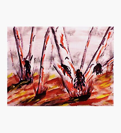 Gum Trees looking messy, watercolor Photographic Print
