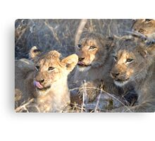 Tongues Out Canvas Print