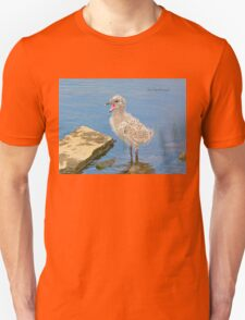 Chick Looking for Mum (Baby Seagull) T-Shirt