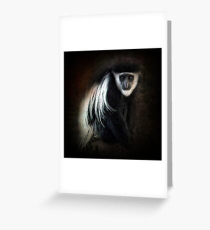 Colobus monkey ~ Greeting Card