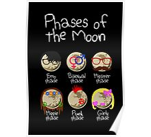 Phases of the Moon (white design) Poster