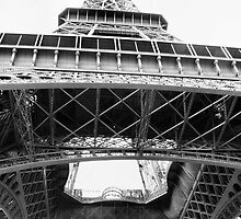 Eiffel Tower  by Nikki  Taylor - Sydney Pet Photography