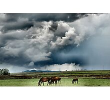 Summer Storms Photographic Print