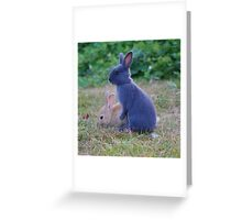 Friends Furever Greeting Card