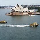 Aussie Icon Trifecta by DashTravels