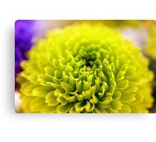 Neon Flower - Close-up Canvas Print