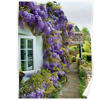 Wisteria Welcome  Poster