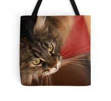 If only the human would just keep that string still ... Tote Bag