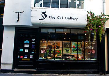 The Cat Gallery by Trevor Kersley