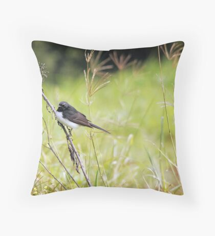 Little Willy Wagtail Throw Pillow