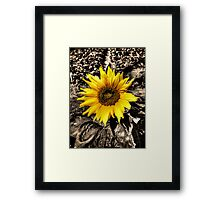 Sunny with a chance of Black and White Framed Print