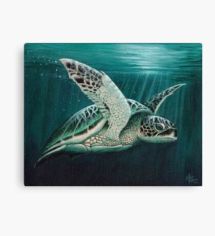 """Moonlit"" - Green Sea Turtle, Acrylic Canvas Print"