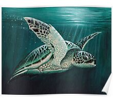 """Moonlit"" - Green Sea Turtle, Acrylic Poster"