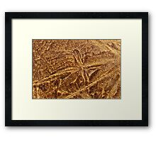 Ice Formations Atop of Sand Framed Print
