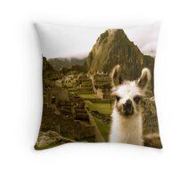 Baby Alpaca at Machu Picchu Throw Pillow