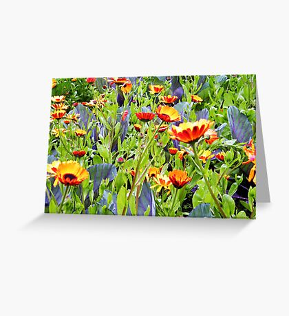 Flowers, Donegal Greeting Card