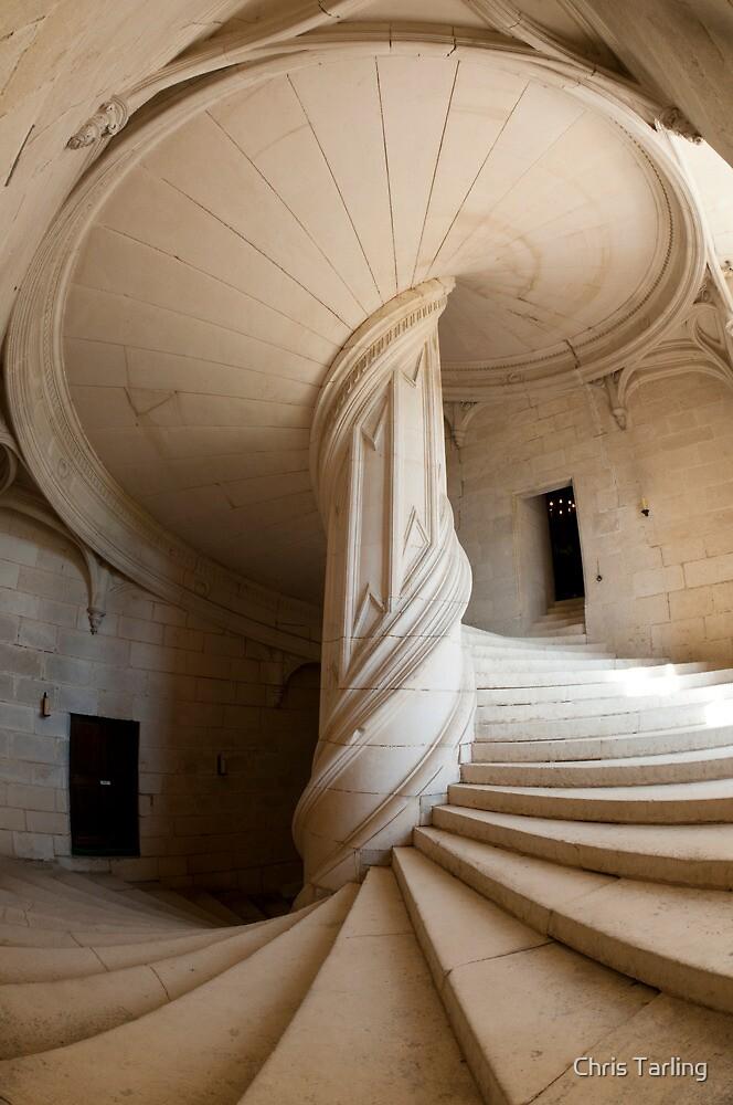 Chateau de la Rochefoucauld Stairway II by Chris Tarling