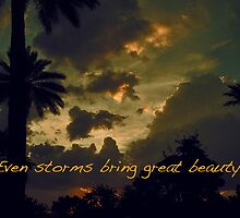 EVEN STORMS BRING GREAT BEAUTY. by Thomas Barker-Detwiler