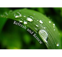 Refresh and Renew (Card) Photographic Print
