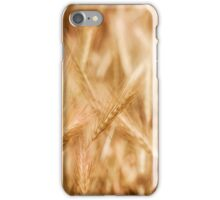 Golden ripe cereal ears grow iPhone Case/Skin