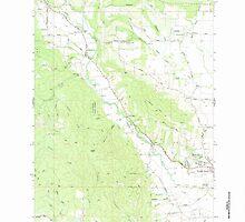USGS Topo Map Oregon Gales Creek 279979 1979 24000 by wetdryvac